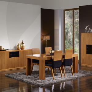 mueble-comedor-de-diseño-10