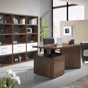 mueble-despacho-de-diseño-2