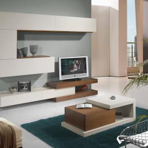 mueble-salon-de-diseño-1