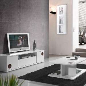 mueble-salon-de-diseño-10