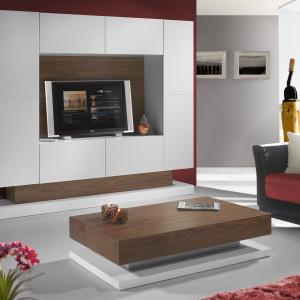 mueble-salon-de-diseño-2