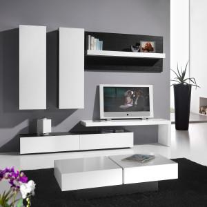 mueble-salon-de-diseño-5