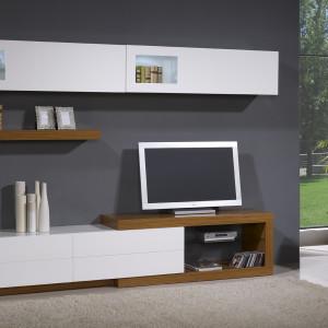 mueble-salon-de-diseño-6